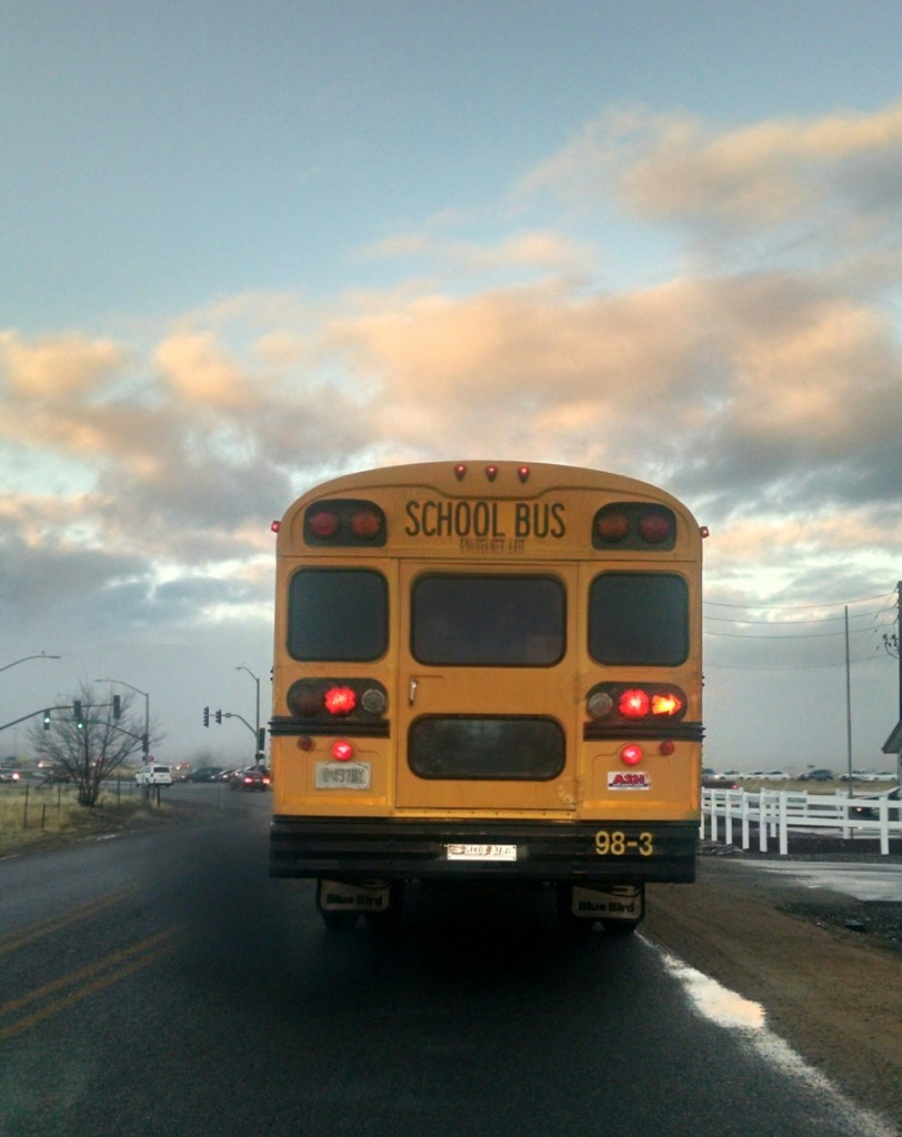 Ann Doherty photo of School bus - commute