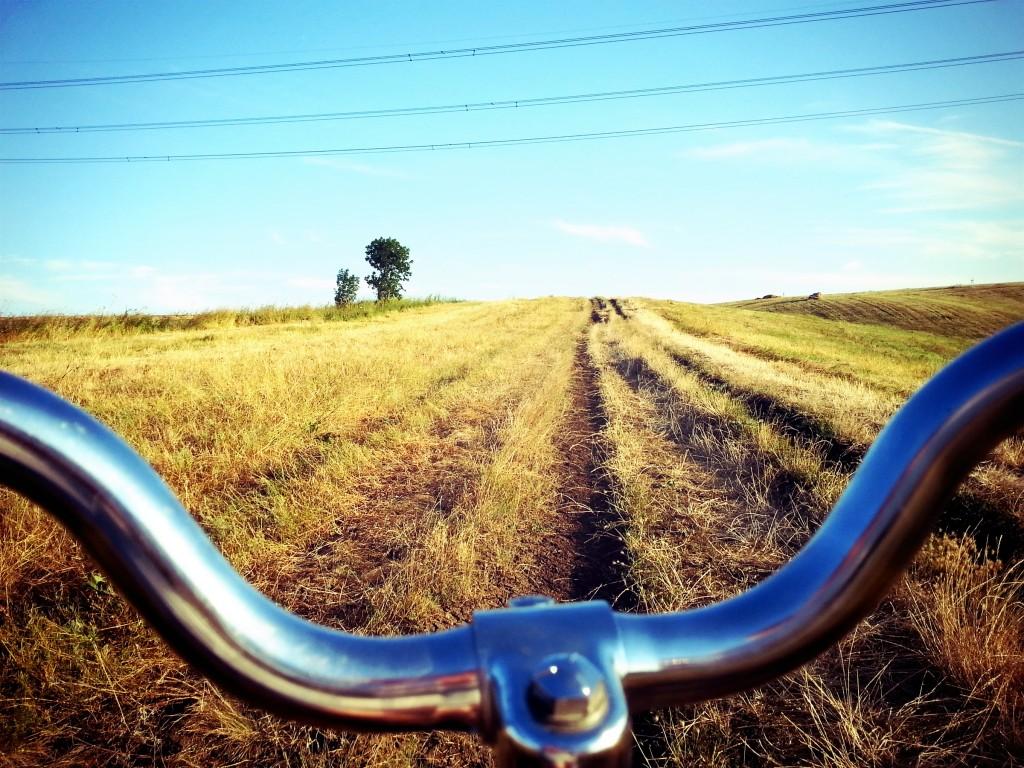 Photogjul photo of bike in a field - commute